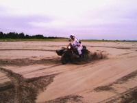 Tearing up the beach